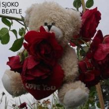 Sjoko - Beatle - cover